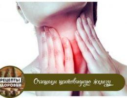 Миниатюра к статье Очищаем щитовидную железу