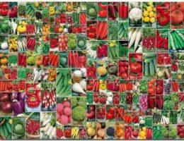 Миниатюра к статье Сроки посева семян на рассаду